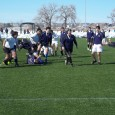 Tweet Tigers Rugby hosted the Brighton Thunderhawks and the Northside Vikings to a round robin of scrimmages at Trailwinds Park.  Each team played four periods on a sunny cool morning...